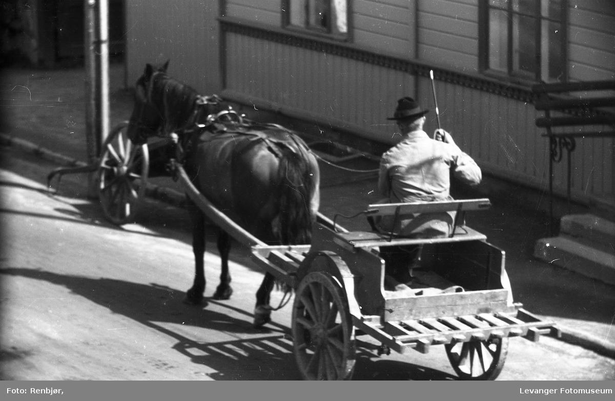 Hest og kjerre i Levanger sentrum.