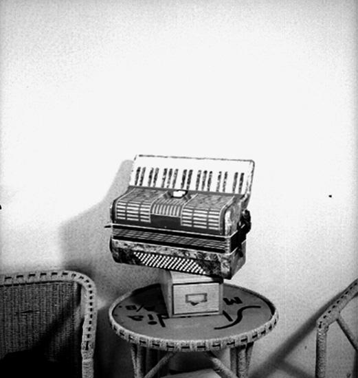 Musikinstrument: dragspel.Skandia