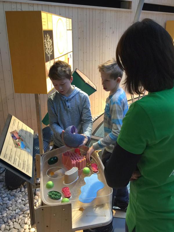 """Elever fra Frydelund skole vises rundt i utstillingen """"Det fantastiske treet""""."""