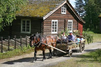 hest_og_vogn_sommer.jpg