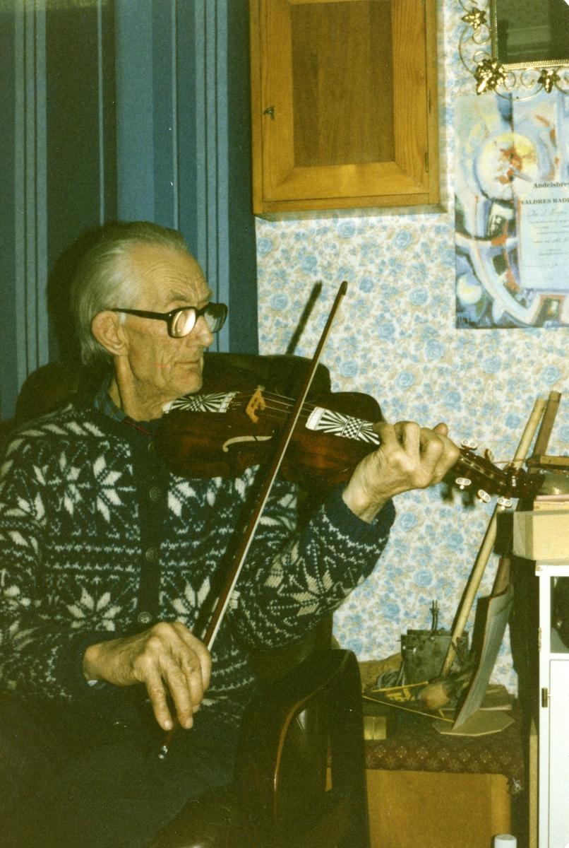Spelemannen Olav Andreas Hauge