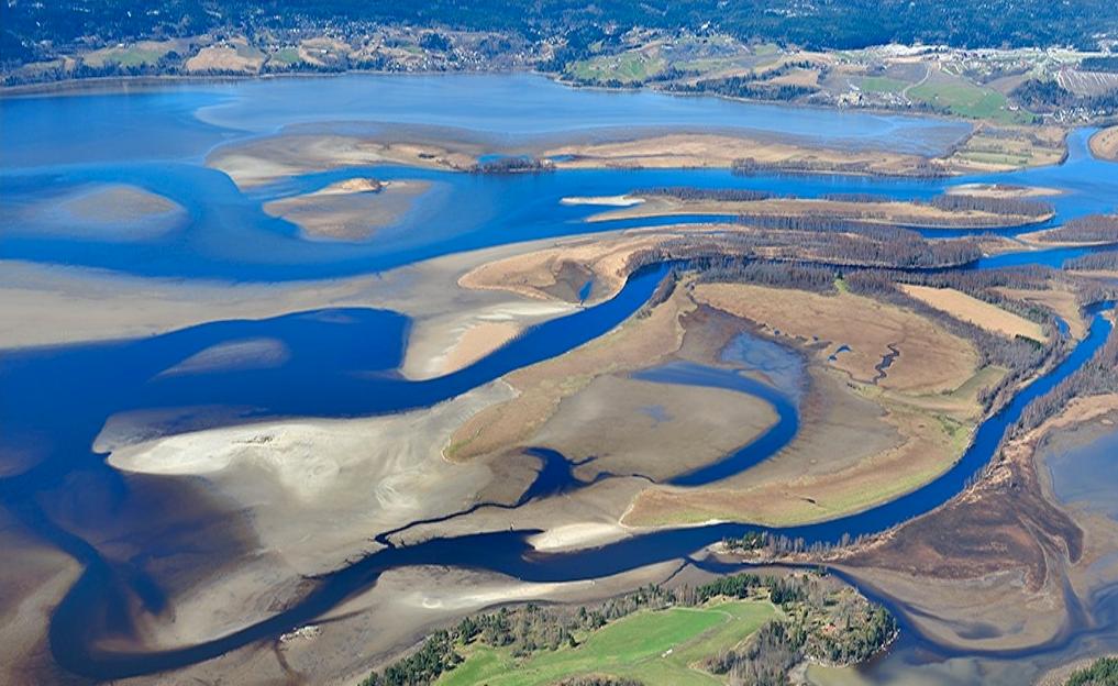 Deltaområdet ved lavvann om våren. (Foto/Photo)