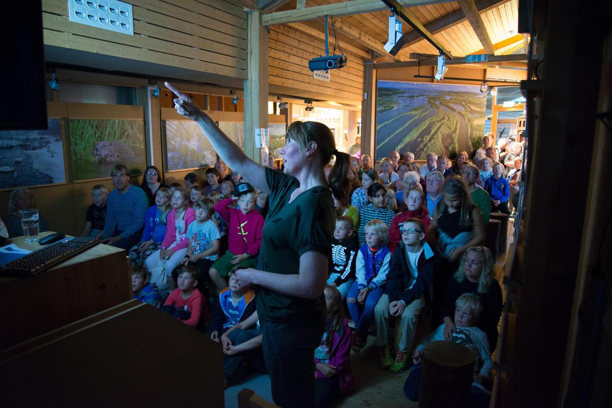 Foto av publikum som hører på flaggermus foredrag