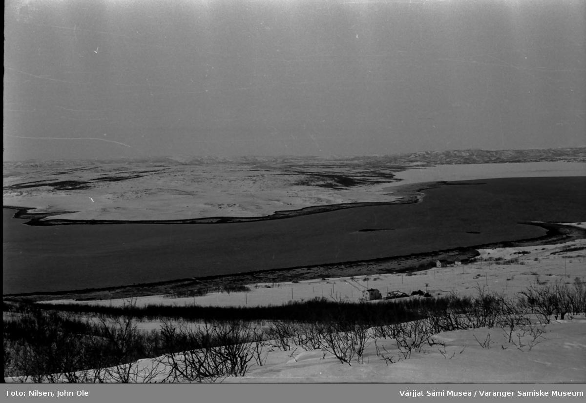 Utsikt mot Angsnes og deler av Abelsborg og Bunes. Huset midt på bildet tilhører Per og Nils Klemetsen. Tatt et stykke ovenfor dagens gartneri i Abelsborg. 1967.