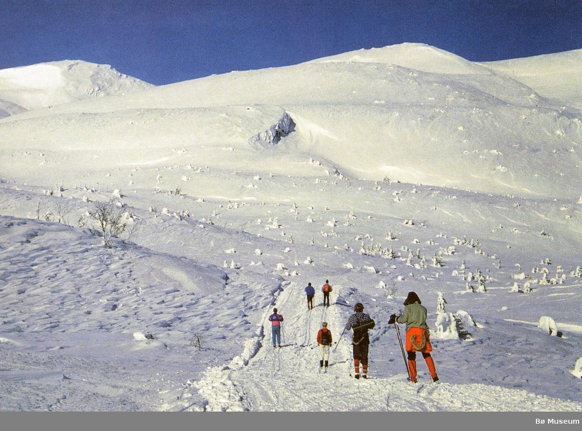 Vinter på Lifjell, skigåing. Farge-prospektkort