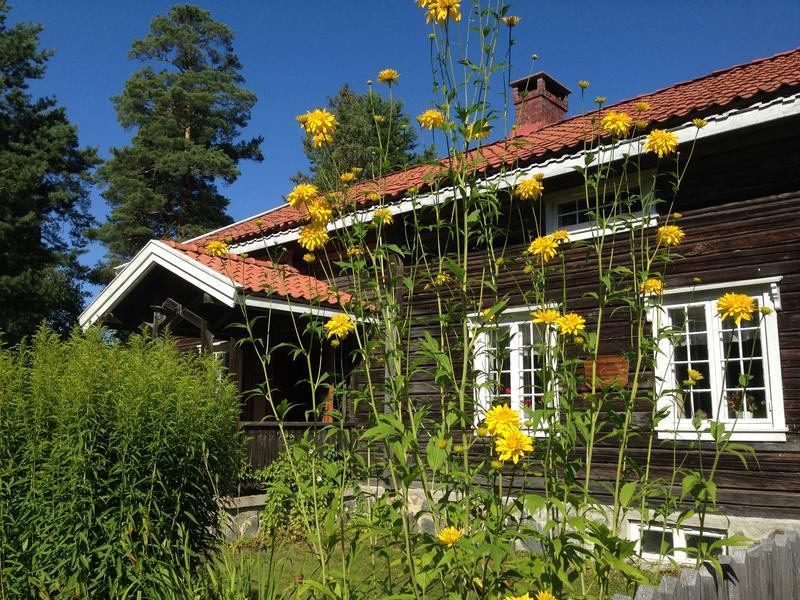 Blomstene foran Storbråtenhuset - liggende