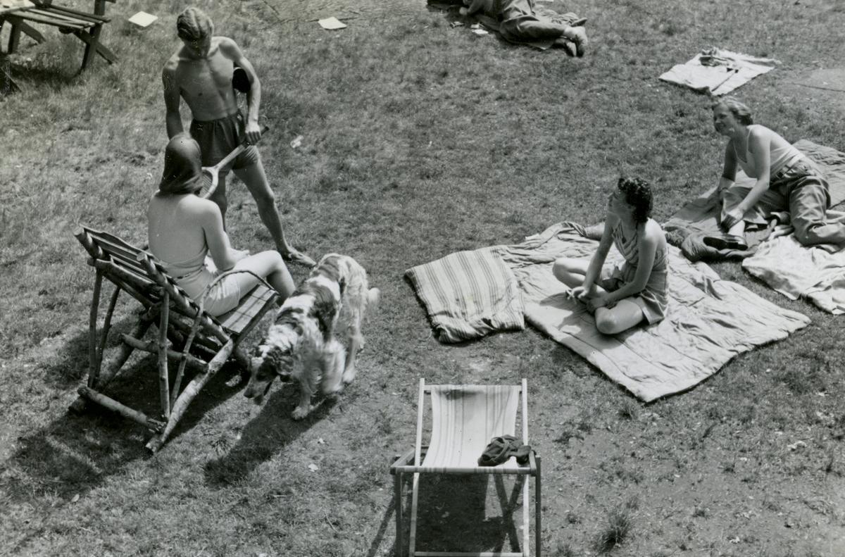 Summertime at the Ruudhytta cabin