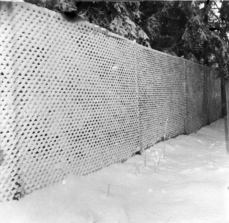 Närbild av staket i skog med snö.