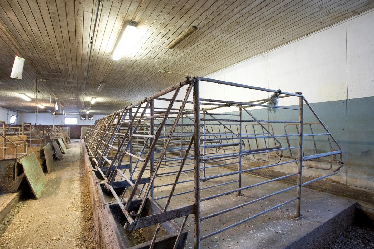 Grisebinge.  Brukt til å fiksere griser i griseproduksjonen. I dag er grisebinger av denne typen forbudt iht. dyrevernlovgivningen