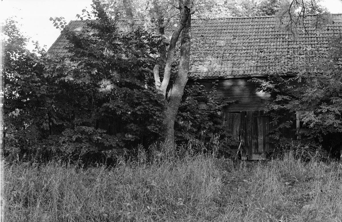 Ladugård och lider, Råsta 2:10, Råstaholm, Tensta socken, Uppland 1978