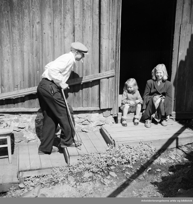 Enerhaugen.Juni 1949.