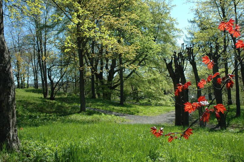 Parken (Foto/Photo)