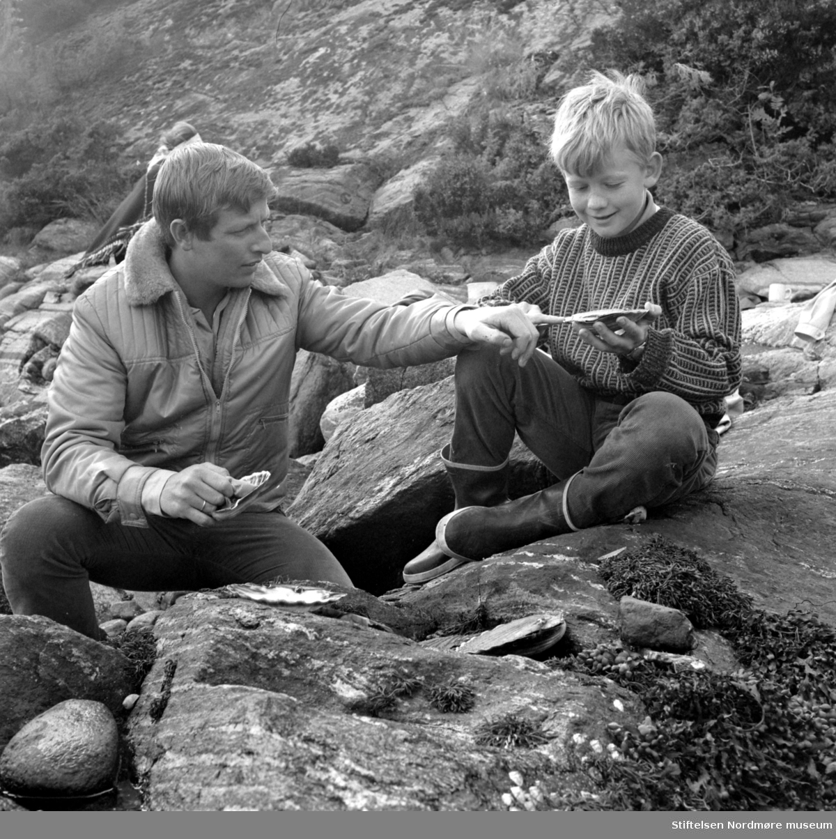 Fra en reportasje i Aftenposten om fiske mm. fra Vågen. Se brev 261/84, Arkiv nr. 44. Her ser vi fra tilberedingen av skjellene. Bildet er i serie med 1984/31:1 (KMb-1984-031.0001.jpg), og som er datert juni 1971. Nordmøre Museum