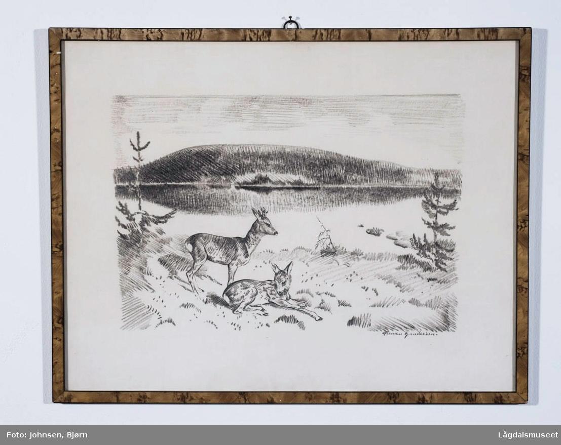 Motivet viser to rådyr i ett landskap.