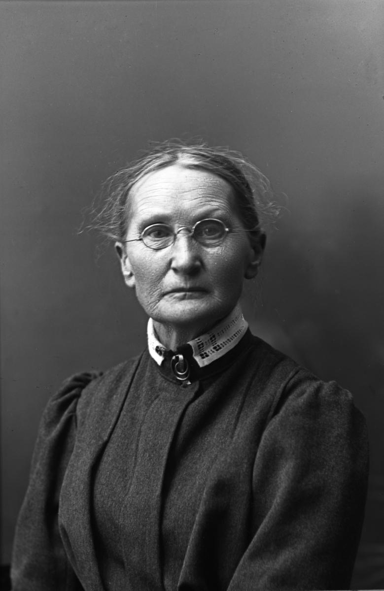 Fotografen Anna Ollson 1841-1926, Karlstad