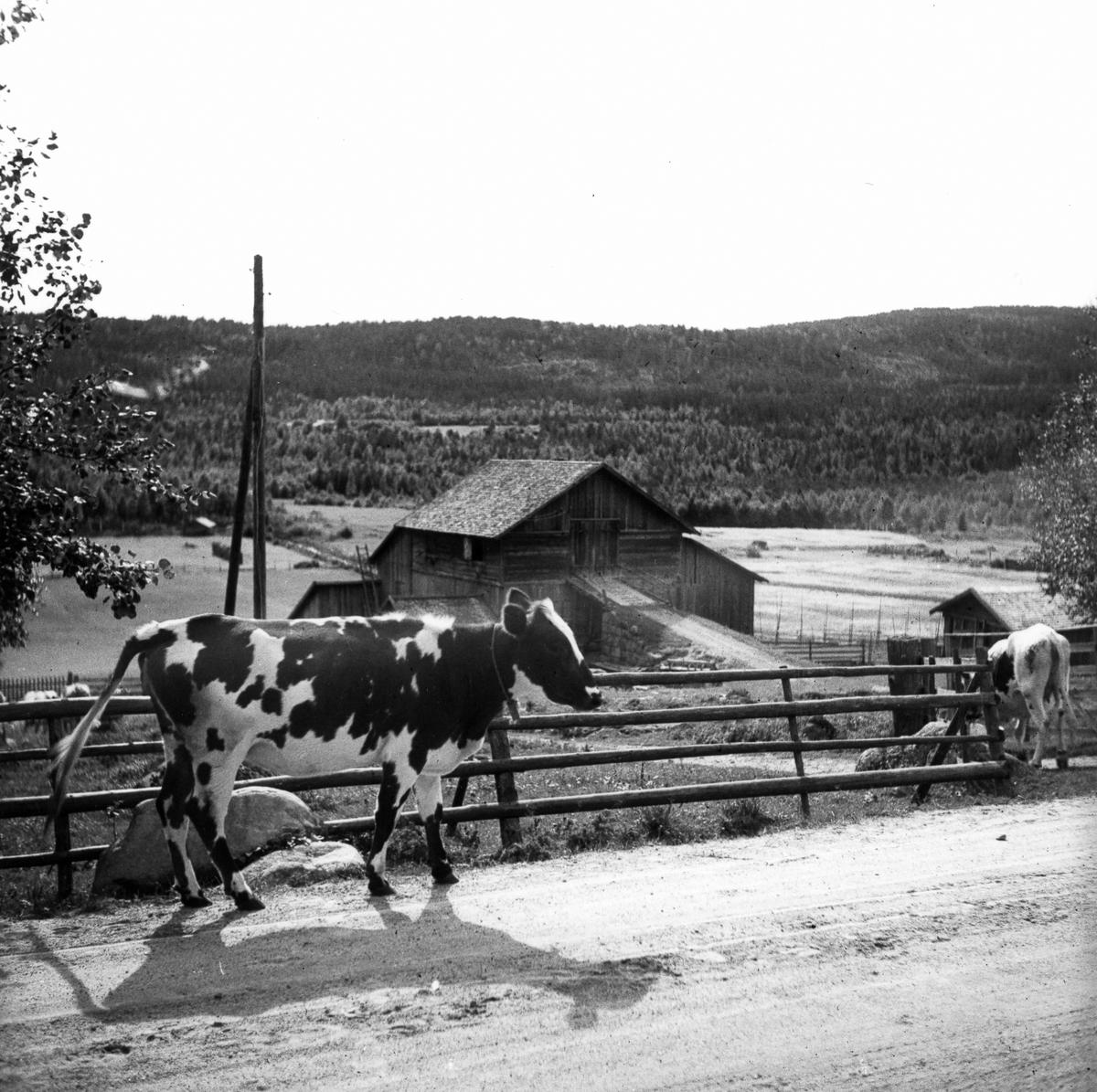 Tröskloge (kornlada) med uppkörsbro.