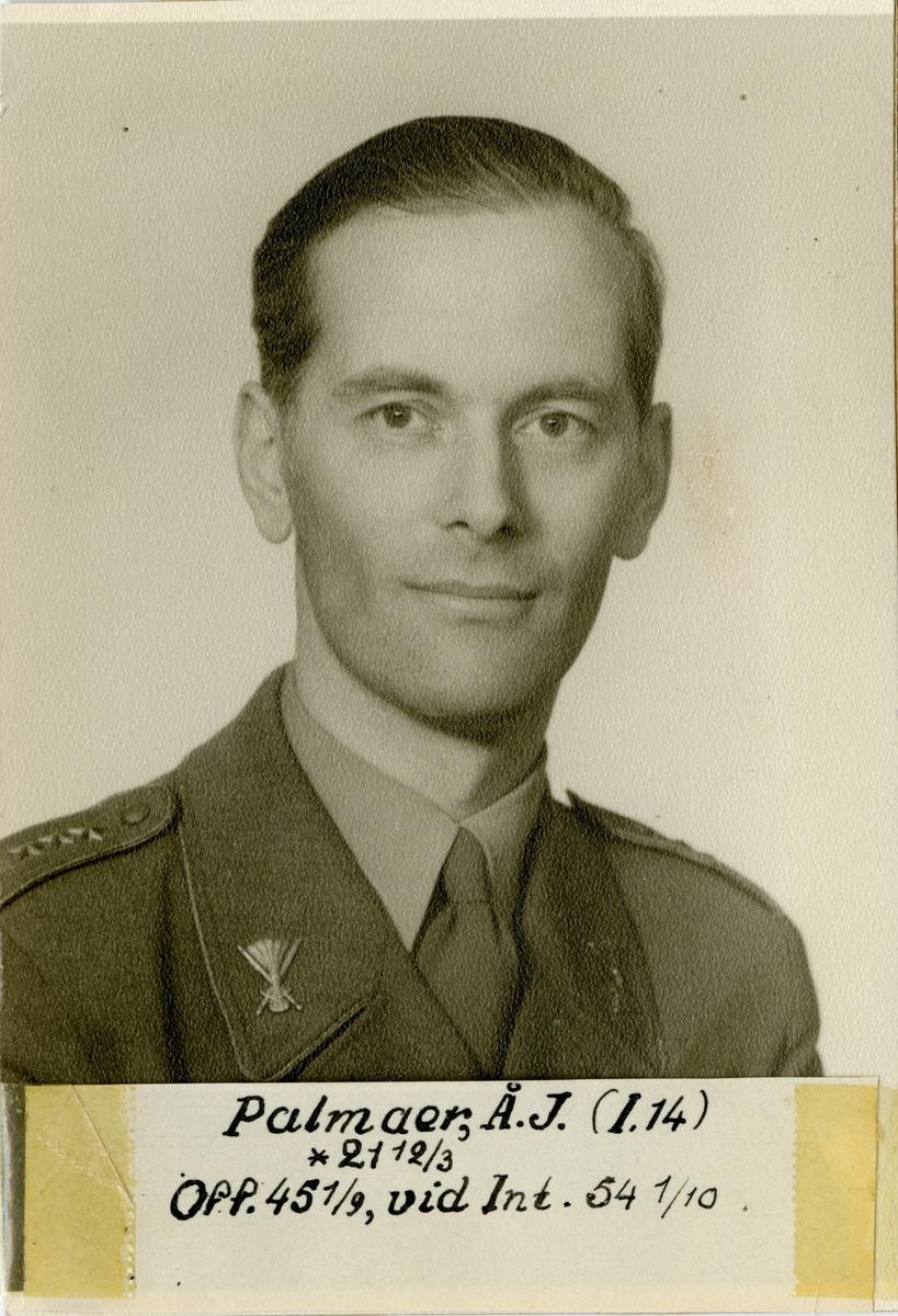 Porträtt av Åke Johan Palmaer, kapten vid Hälsinge regemente I 14 och vid Intendenturkåren.
