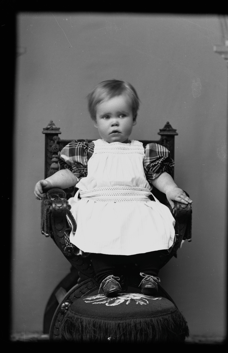 Gunnar Hallströms gosse, 1892. Fotograf okänd.