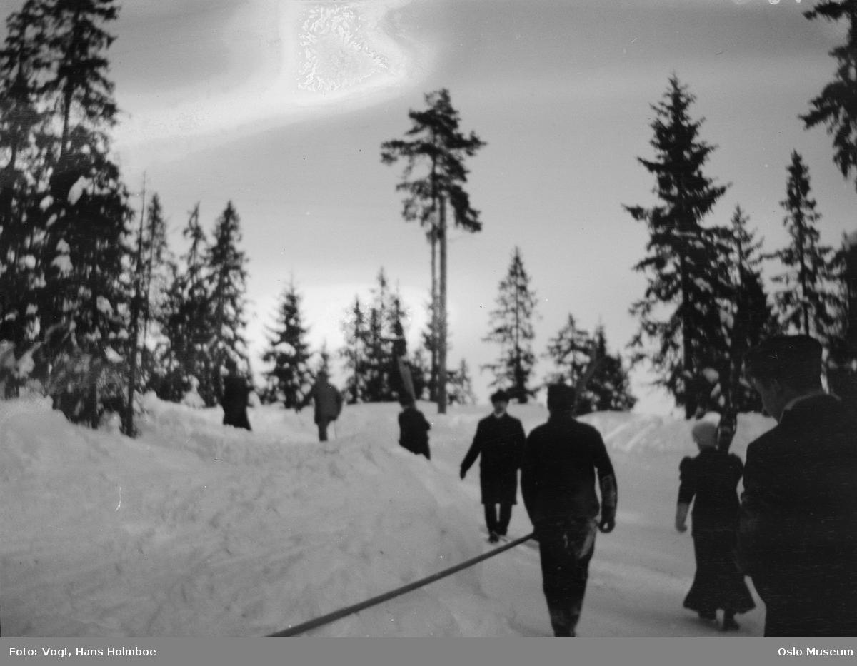 skog, snø, mennesker, turgåere