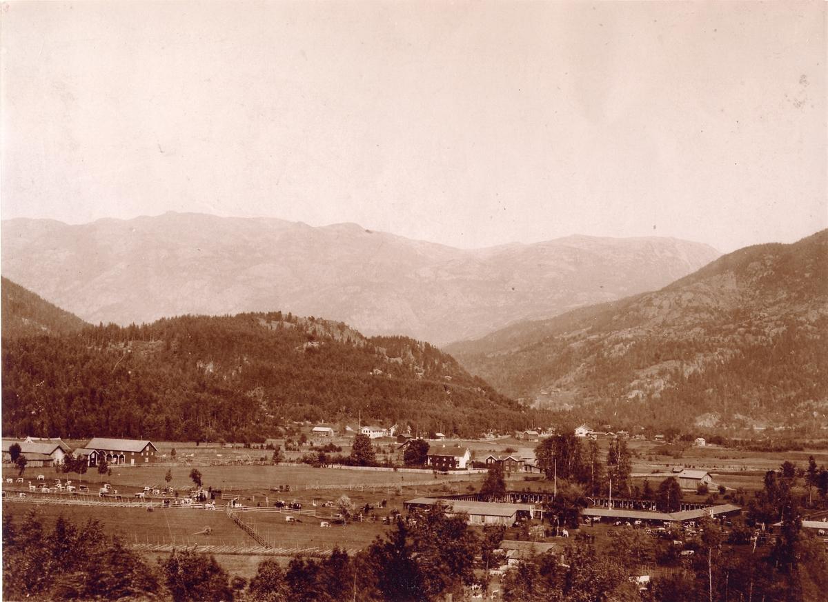 Dyrskuplassen kring 1900