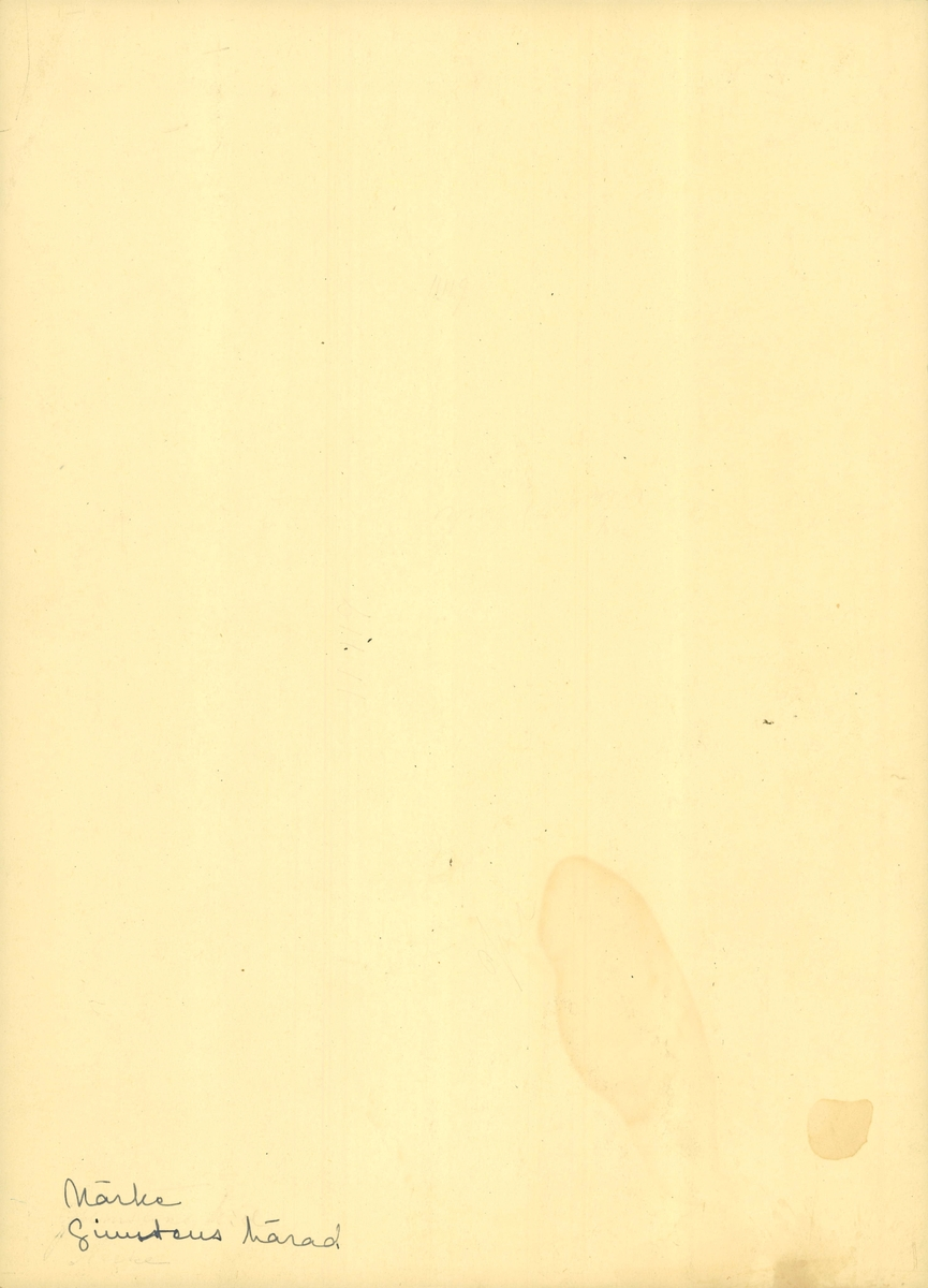 Halskläde eller huvudbonad broderad med tambursöm