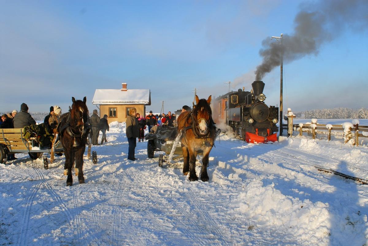Julekjøring på museumsjernbanen Urskog-Hølandsbanen, Tertitten. Toget, trukket av damplokomotiv nr. 7 Prydz fra 1950, har kommet til Fossum stasjon og de reisende kan fortsette med hest og slede.