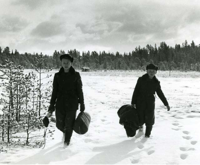 Olle och Erik vid orrkojan på Degelmyren, Rengsjö.
