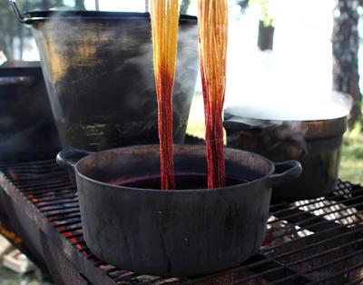 Jerngryte står på rist over bål, ullgarn trekkes opp fra gryta; det er gult øverst og oransje på den delen som har vært dyppet.