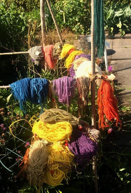 Garnbunter i mange forskjellige farger henger til tørk etter at de er blitt farget med ulike planter.