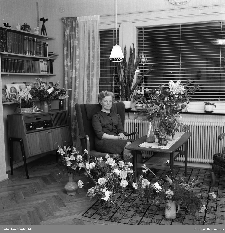 Fru Vikström, Pilgränd, födelsedagsporträtt på 50-årsdagen.