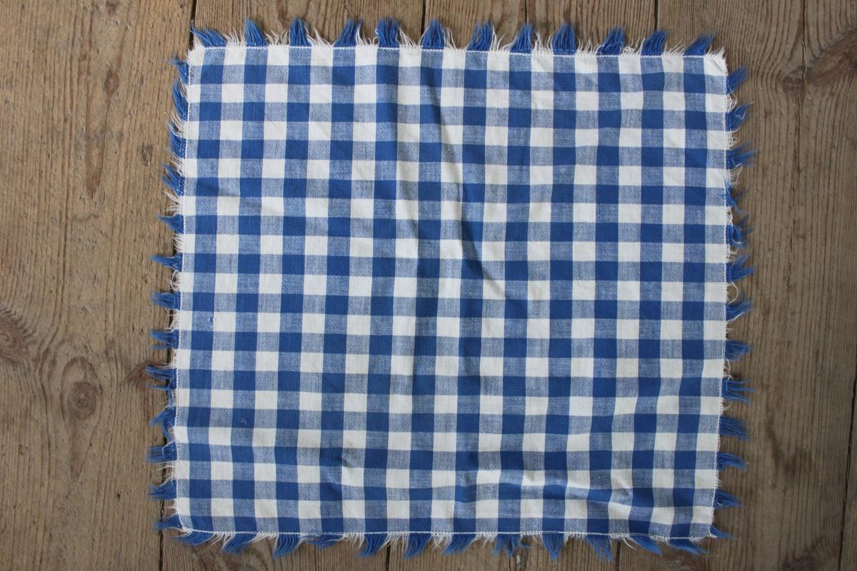 Fyrkantig blå- och vitrutig duk med fransar runt kanterna.