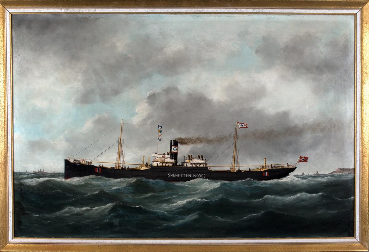 Skipsportrett av dampskipet SNEHETTEN under fart ser flere andre skip. Trolig utenfor Le Havre,  Frankrike. Skipet har nøytralitetsmerker på skipssiden.
