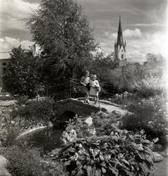 Parken vid Läroverket. Barn på stenbron.