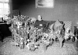 """Födelsedagsporträtt - """"fru Pettersson"""""""