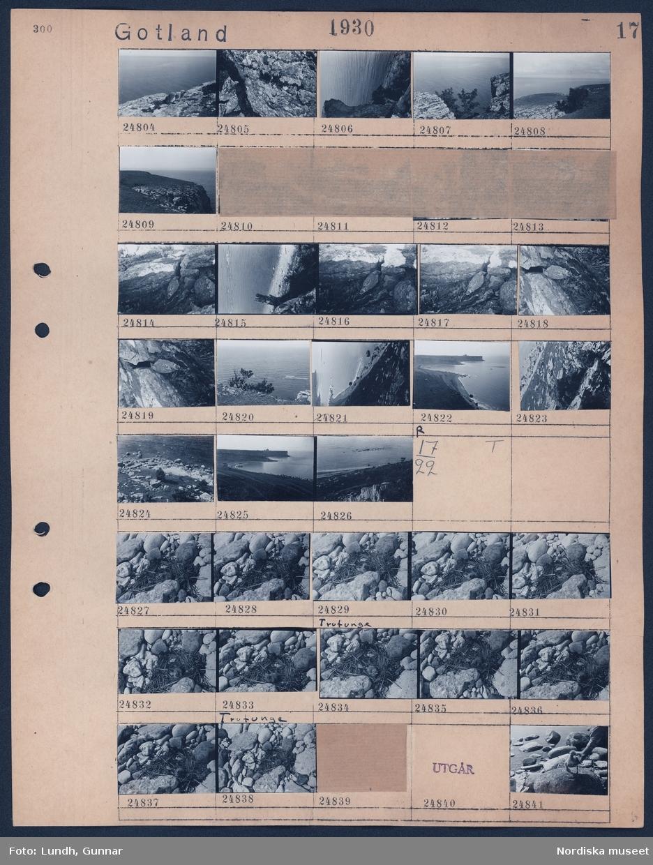"""Motiv: Gotland, Karlsö; Landskapsvy med hav och klippa.  Motiv: Gotland, (ingen anteckning); Fåglar i ett fågelbo på en stenstrand, en fågelunge sitter på en sten """"Trutunge""""."""