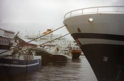 Loddesesong i Honningsvåg. I bakgrunnen Hurtigruta ved kaia.