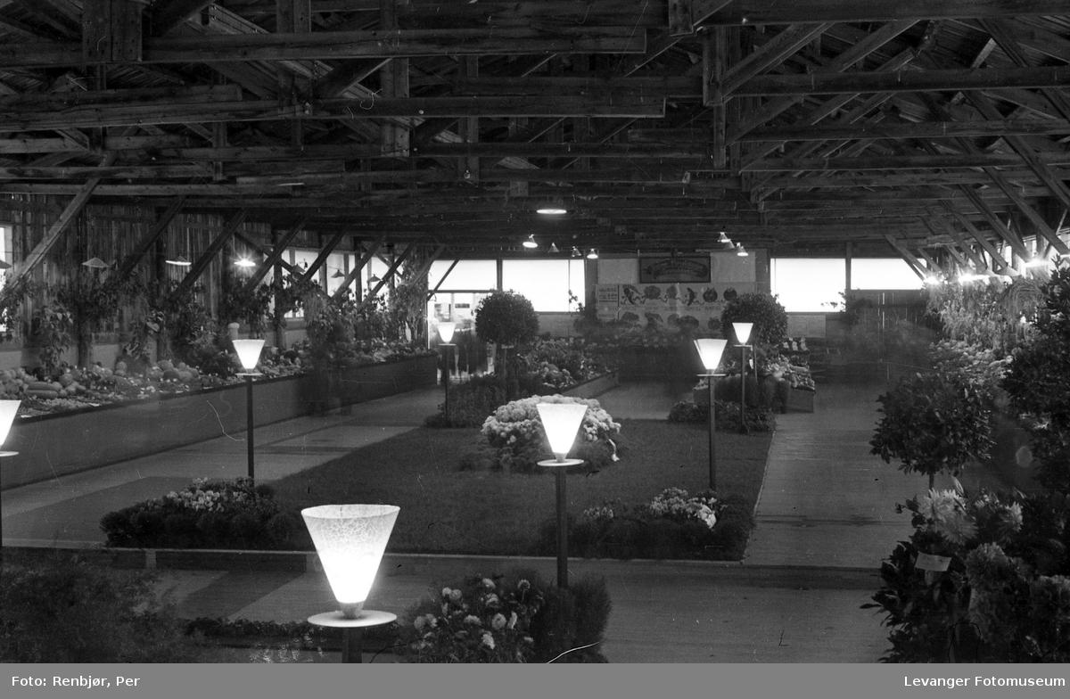 Fra utstillingen om høsten under byjubileet i 1936, hagebruksutstilling.