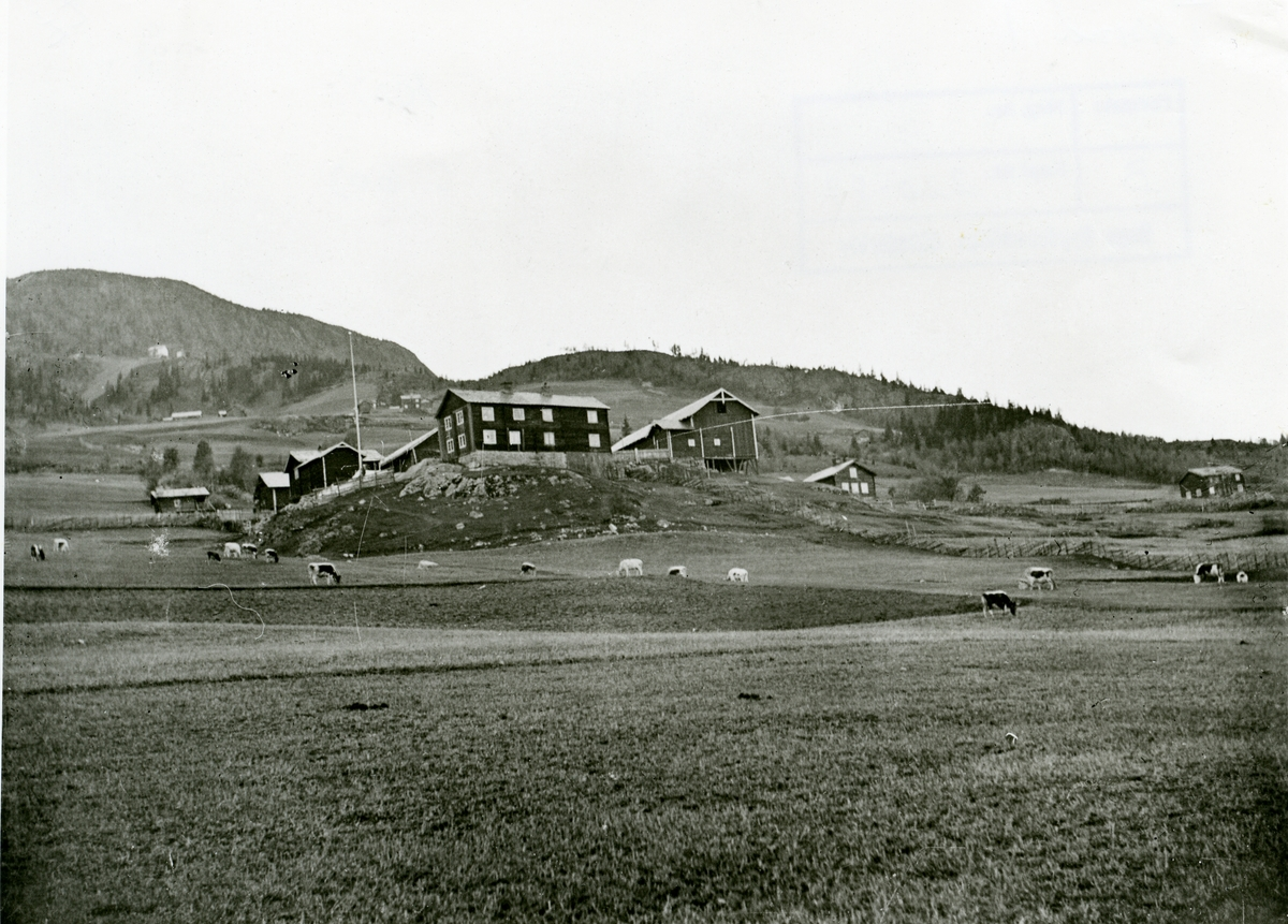 Garden Søre Thorsrud, Sør-Aurdal.