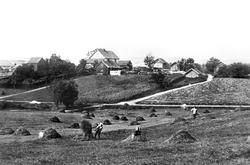 Gårdene Dæhli 42/1 & 43/1 i Spydeber med nesten felles gårds
