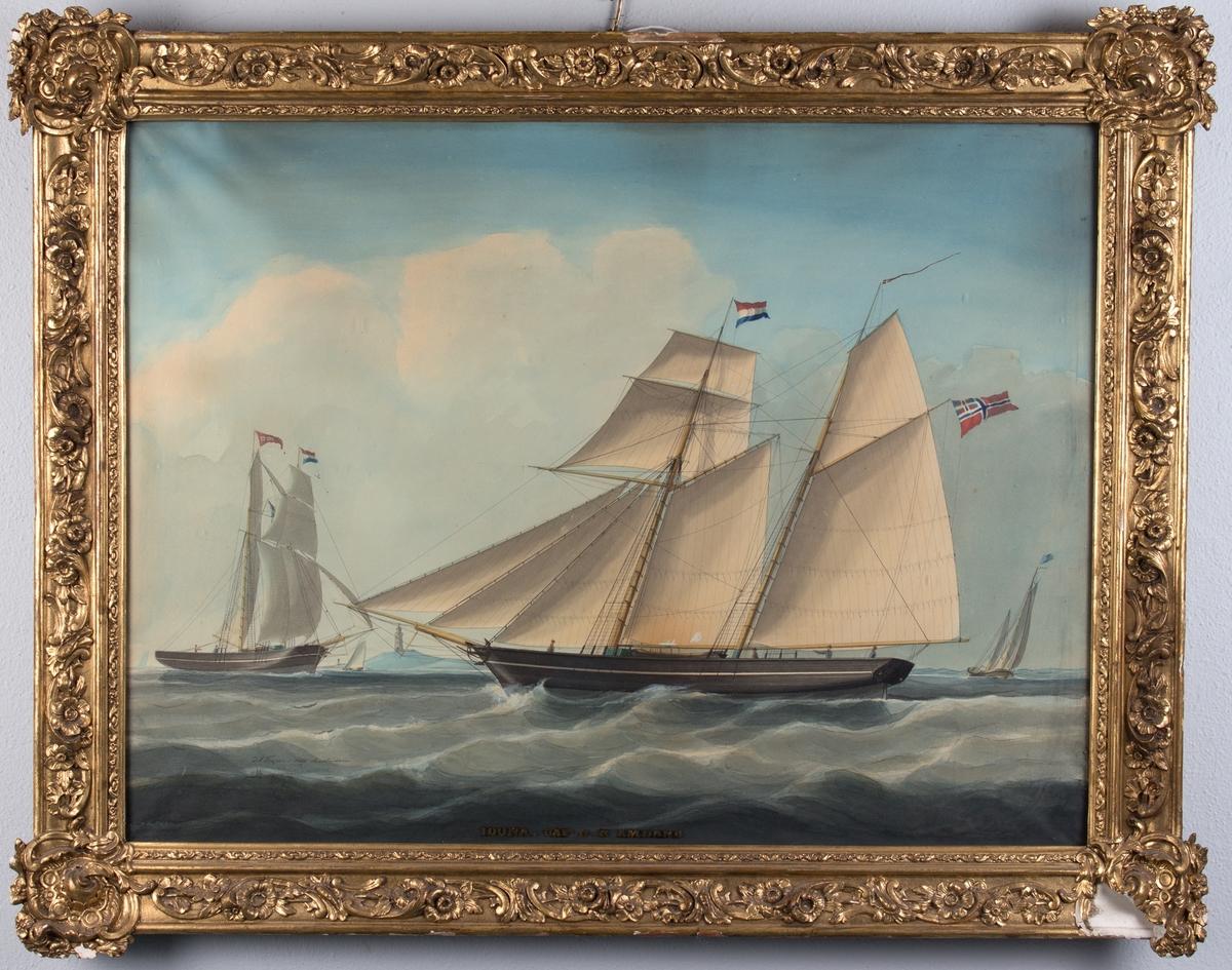 Skipsportrett av skonnert IDUNA med full seilføring. Nederlandsk flagg i masten, norsk flagg med unionsmerke i akter. Samme skip fra en annen vinkel sees til venstre i motivet, samt flere mindre skip og et fyrtårn. Tre mann på dekk.