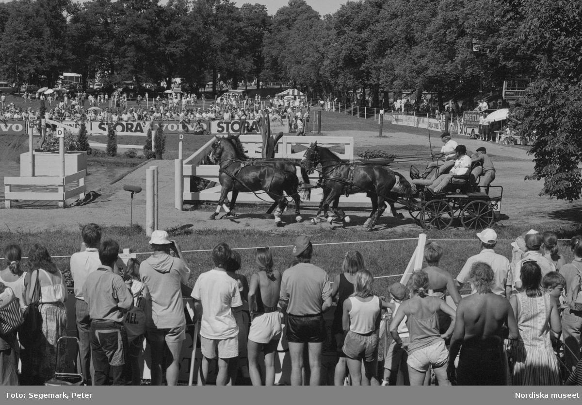 Ryttar VM på Djurgården i Stockholm.