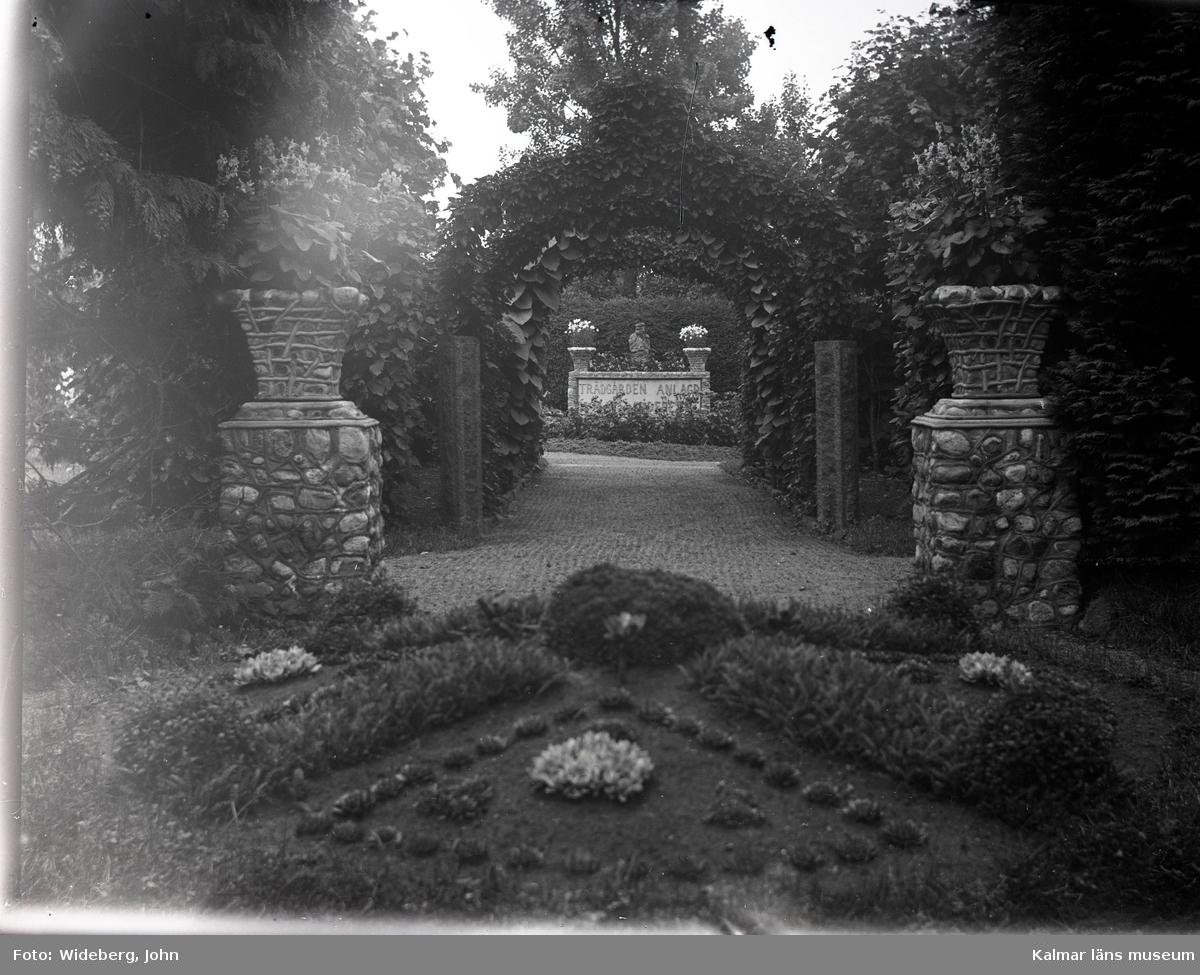 Pergola-allén mot norr, i Widebergs trädgård.  John Wideberg blev tidigt intresserad av trädgårdsanläggningar. Han hade sannolikt hämtat inspiration på resor han gjort till Stockholmsutställningen 1897 och till Göteborg 1923. Han blev också vän med stadsträdgårdsmästaren Haglund i Kalmar. John hade palmer i potatiskällaren under huset och påfåglar, ekorrar och pärlhöns som övervintrade i hönshuset. En papegoja och en sköldpadda fick tillbringa vintrarna inne i köket. Runt trädgården planterade han skyddande häckar. Arbetet påbörjades redan när han var 18 år med att han hämtade åtta granar i skogen, och planterade dem i en ring mitt i trädgården. Dessa finns kvar än idag. I slutet av 1930-talet arrenderades jordbruket ut och John kunde ägna sig på heltid åt trädgården, som blev alltmer av ett besöksmål. John började ta inträde, 25 öre. John utvecklade också sin hobby som tavelmålare och som fotograf. Han tog med sin lådkamera under årens lopp hundratals vackra bilder från trädgården, liksom på vyer, hus och människor i takten. Ca 500 av dessa bilder finns bevarade som glasplåtar, skänkta till Kalmar läns museum.