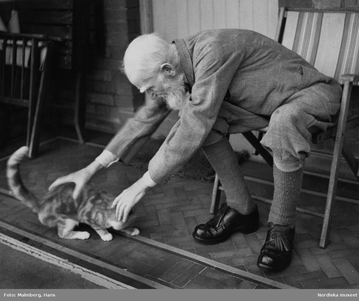 Porträtt, av den 90-årige författaren George Bernhard Shaw sittande i helfigur på en altan på väg att fånga in en katt. Nobelpristagare i litteratur 1925.