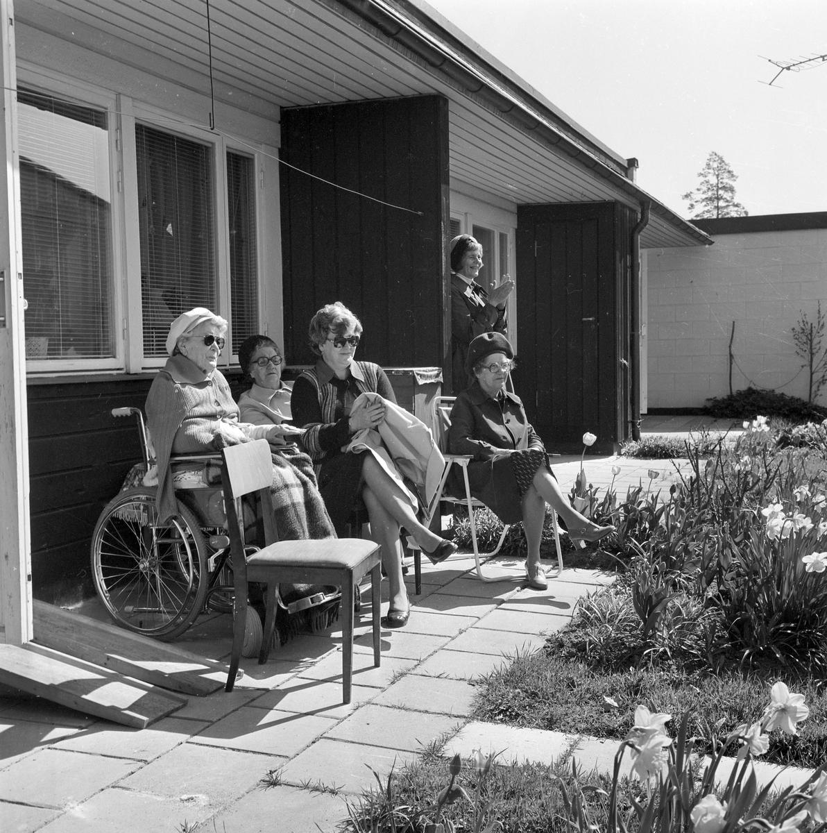 Vårsång av Bomhus ABF Manskör. Maj 1977