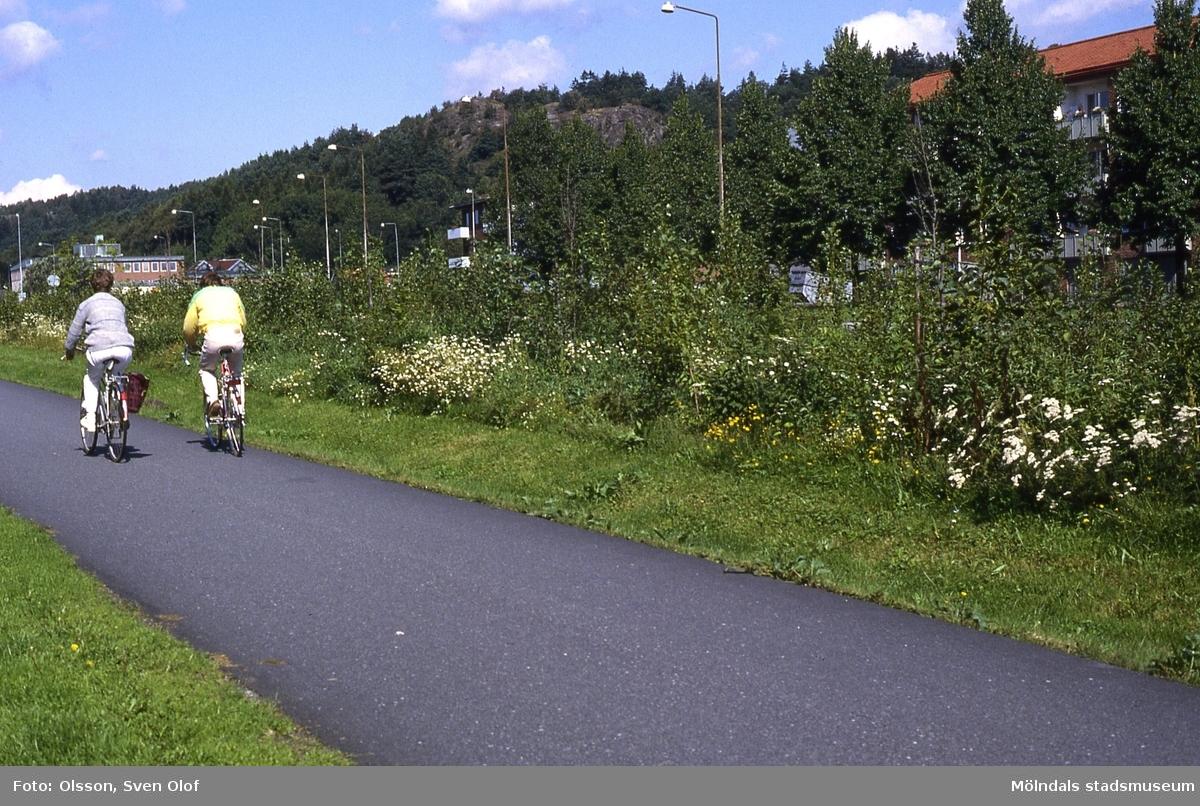 Två cyklister cyklar på GCM-leden som går till Jungfruplatsen i Mölndal, år 1985. Ogräs växer vid sidan av leden.