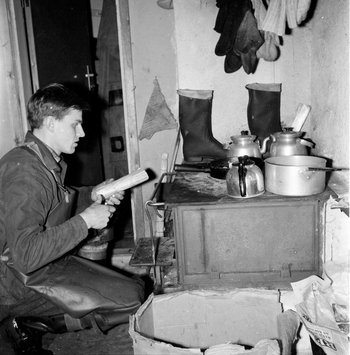 Skog. Skogsrepotage vid Sörbränningen 26/1-1965