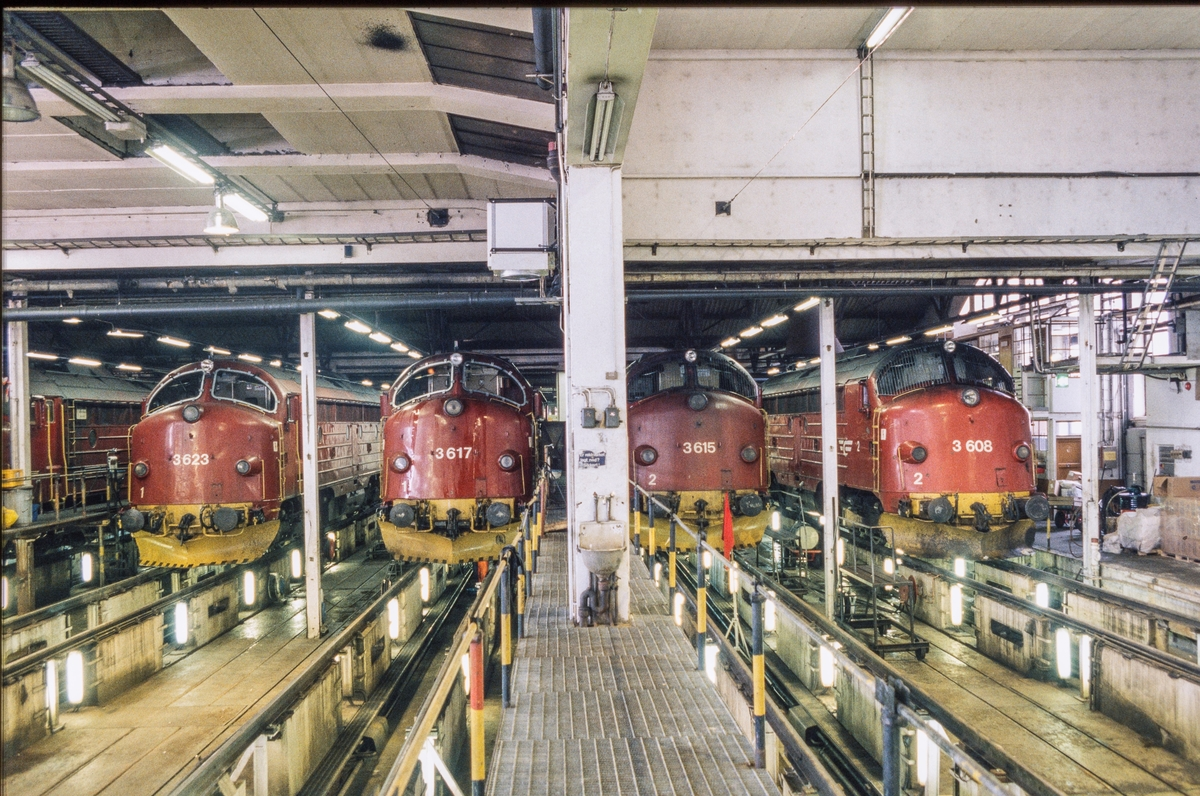 Fra lokomotivstallen på Marienborg i Trondheim. Seks diesellokomotiver type Di 3 og et diesellokomotiv type Di 4 (til høyre).