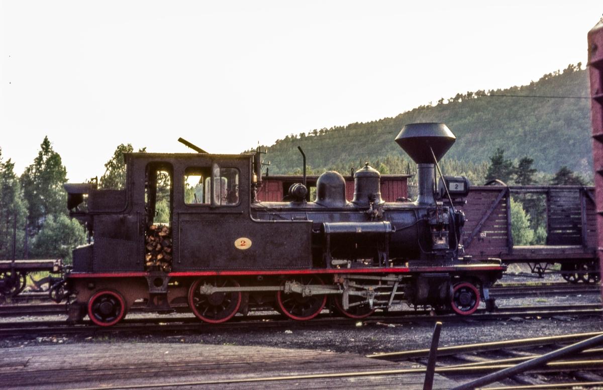 Setesdalsbanens damplokomotiv nr. 2 på driftsbanegården på Grovane.