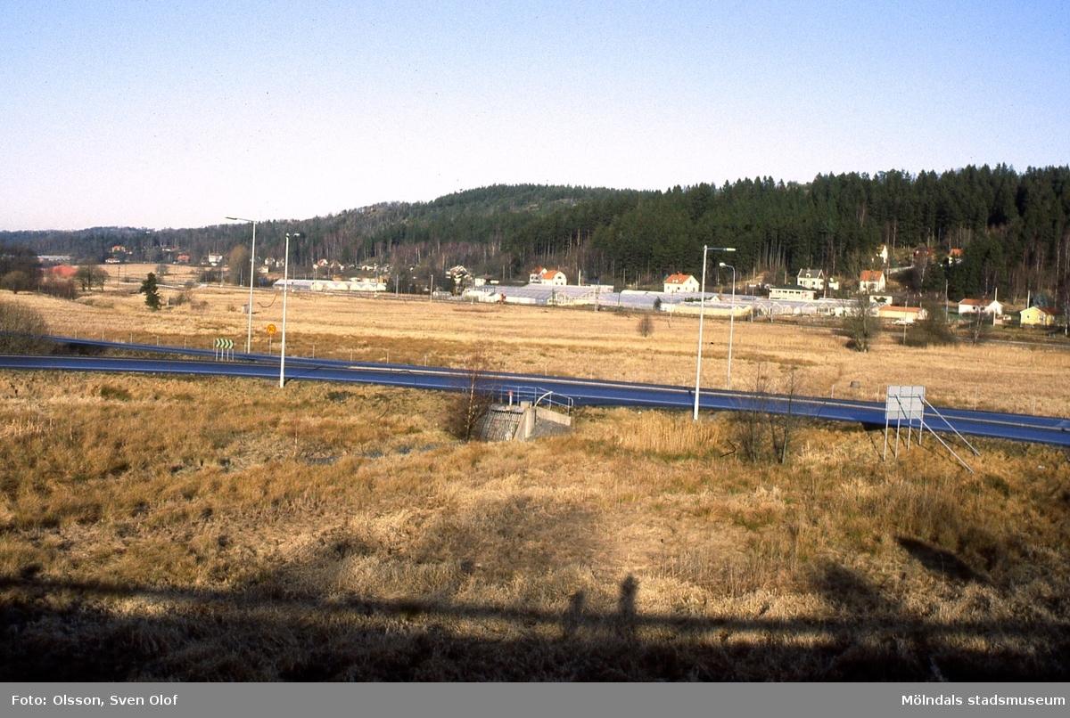 Växthusen i Sandbäck, Mölndal, sedda från söder i mars 1993.