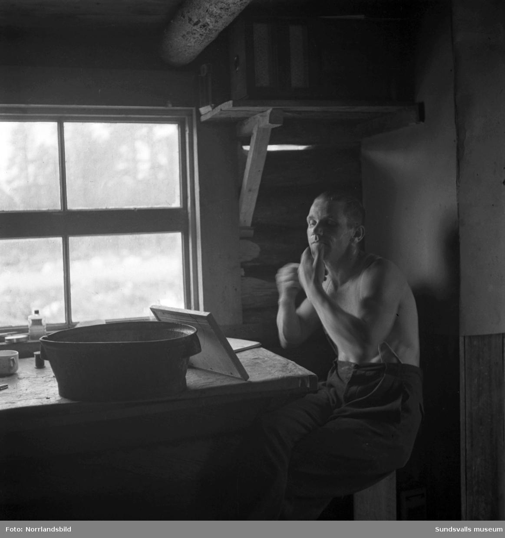 Tre män jobbar med huggning och resning av en tjärdal. Okänd ort.